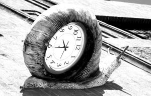 snail clock.blogpost
